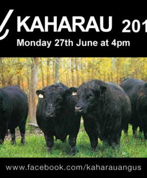 Kaharau Angus - 27 June 2016