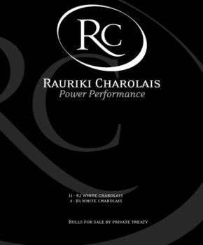 Rauriki Charolais