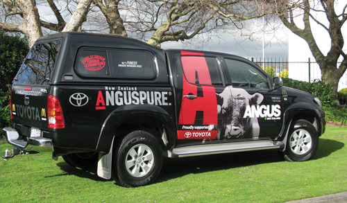 Angus New Zealand Ute