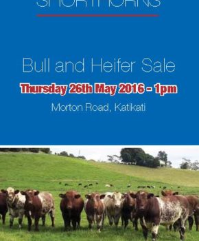 Morton – 26 May 2016