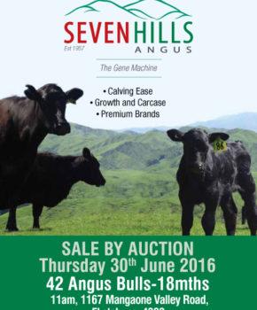 Seven Hills - 30 June 2016