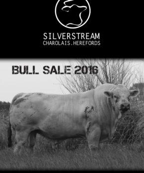 Silverstream – 15 June 2016