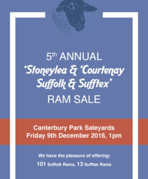 Stoneylea/Courtenay - 9 December 2016