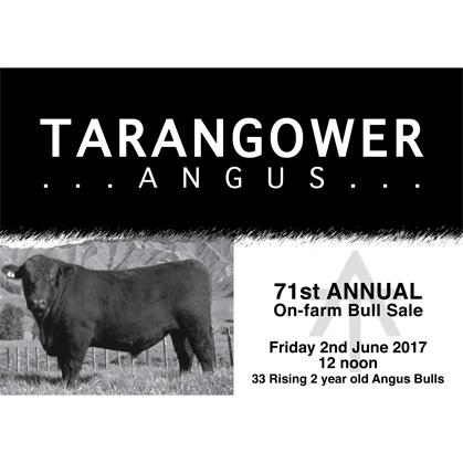 Tarangower Angus - 2 June 2017
