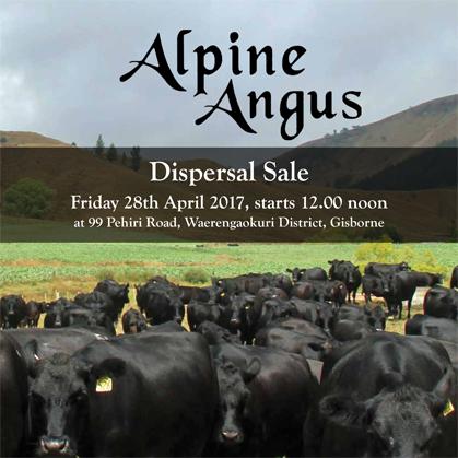 Alpine Angus - 28 April 2017